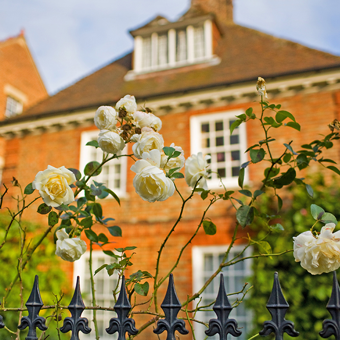 Flowers growing in front of a Victorian home in Oxford
